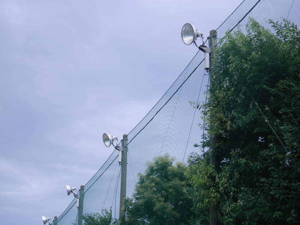 西武台高校 取替前照明器具